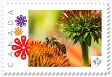 uq. BEE = HONEYBEE = Insects = Picture Postage MNH-VF Canada 2019 [p19-01s21]