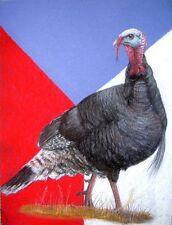 Original Pastel Drawing Patriotic American Wild Turkey Wildlife Art Sally Porter