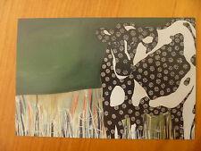 POSTCARD...HEIFER..COW..FRIESIAN CATTLE..ARTISTIC..HEIFER IN THE PADDOCK / GRASS