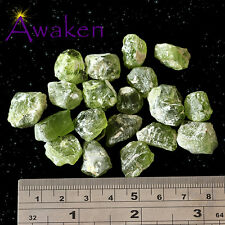 *ONE* PERIDOT Natural Rough Approx 10-20mm *TRUSTED SELLER*