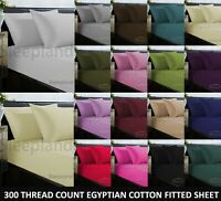 300TC 100% Egyptian Cotton Fitted Sheet Single 4FT Small Double King Super King
