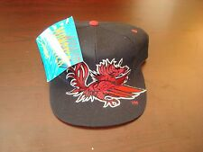 SOUTH CAROLINA GAMECOCKS  BIG LOGO  SCRIPT NEW VINTAGE 90'S HAT CAP  SNAPBACK