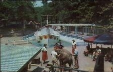 Pittsburgh PA Children's Zoo - Elephant - Postcard