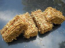 12 Miniature Wheat Straw Bales . Wholesale Lot .Great for Weddings or Crafts