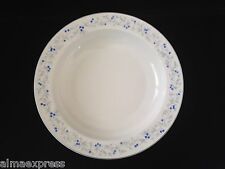 Arzberg Germany ARZ39 China Blaubeere Blueberries on Gray Vine SOUP CEREAL BOWL