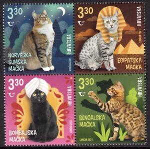 CROATIA 2021 CATS CHATS KATZE GATTI GATOS [#2103]