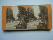 VUE STEREO PHOTO ARLES LES ALISCAMPS ALBUMINE