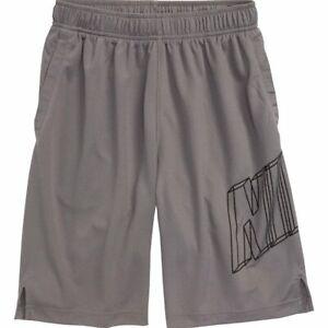 Nike Big Kids Boys' DRY Training Shorts (Grey) Size XL