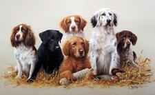 James Killen Class Reunion Hunting Dog Print   26 x 16