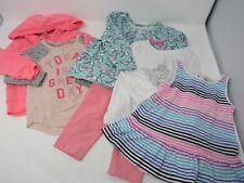 Oshkosh & Carters Girls Lot Tops Shirts Leggings Hoodie Pink Size 12 Months