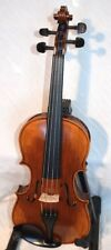 New Stentor Elysia violin, one piece back 4/4