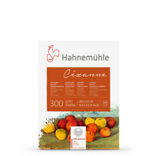 Hahnemuhle : Cezanne block 300gsm(140lb) 24x32cm 10 sheets NOT