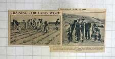 1940 Women Trained In Farm Work, Hoeing, Foot Rot, At Agricultural College