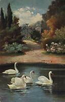 VINTAGE SWANS SAILING near FANCY GATE POSTCARD  - USED - sent to Emmaville NSW