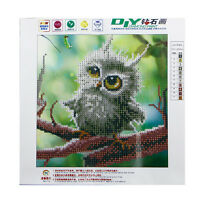 5D Diamond Owl Embroidery Painting Rhinestone Cross Stitch Craft DIY 25*25CM