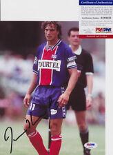 David Ginola PSG France Signed Autograph 8x10 Photo PSA/DNA COA #2