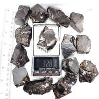 Elite Shungite Noble Water Stones C60 EMF Raw Rough Karelia Bulk Lot 1 LB 30-35G