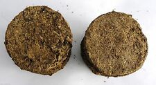 Cow dung cakes 30pc camphor Havans rituals durga pooja yoga +ve energy wealth