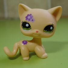 Light Yellow #1962 Short Hair Kitty Cat Little pet shop LPS Action Figure