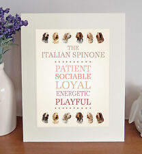 """Italian Spinone 10"""" x 8"""" Free Standing Breed Traits Picture Mount Lovely Gift"""