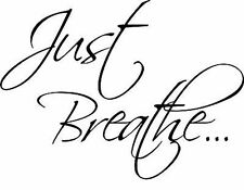 Just Breathe  Vinyl Home Wall Decal Decor Sticker