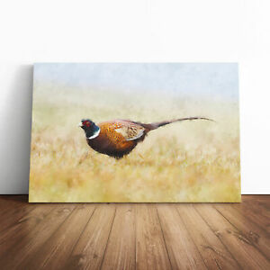A Pheasant Bird Painting Wall Art Canvas Print Large Home Decor Picture