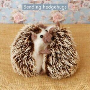 Cute Whimiscal birthday Card hedgehogs sending hedgehugs