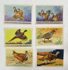 """Cinderella  6  nwf  poster stamp """"GAME BIRDS """"   MNH OG   SEE PIC"""