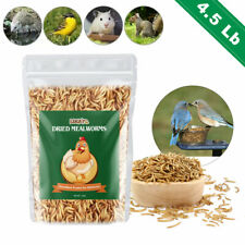 New listing Dried Mealworms for chickens 4.5lbs- Chicken Treats Duck Feed Organic Meal Worms