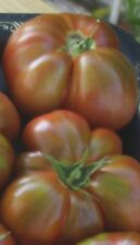 Paul Robeson Tomato Seeds- Organic- Rare- 50+ 2018 Seeds $1.69 Combined S/H