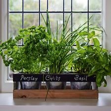 Indoor Herb Garden Kit Wooden Windowsill Planter Grow Your Own Herbs for Kitchen