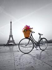 Clementoni - Romantic Promenade in Paris - 500 Piece Jigsaw Puzzle