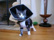 Comfy Cone Elizabethan Collar X-Small Cat, Dog wound healing e-Collar BLACK