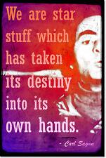Carl Sagan ART PRINT PHOTO POSTER cadeau science-avec citation de cosmos