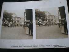 Old Stereoview photograph bullock sledges Funchal Madeira Portugal c1920s