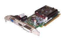 Pegatron G210/D3/DHV nVidia 512MB tarjeta gráfica PCI Express con puerto HDMI y DVI