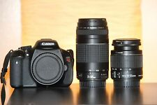 MINT Canon Rebel T3i SLR 18.0 MP SLR Camera With EF-S IS II 18-55mm and 75-300mm