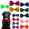 Dog Bow Tie Pre Tied Dickie Adjustable Pet Collar Animal Neck Hound Canine Pooch