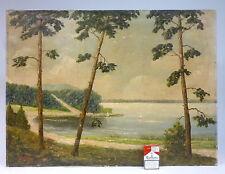 Gemälde Bild signiert:  Lothar Gühler