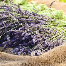 Room Wedding Supplies Flower Bouquet Dried Flowers Home Decor Natural Lavender