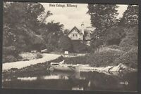 Postcard Killarney in County Kerry Ireland early view of Dinis Cottage
