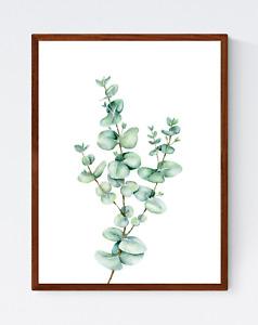 Eucalyptus Leaves Print - Flower Wall Art