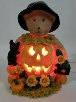 Lighted Witch Teddy Bear Jack-o-Lantern Pumpkin Sunflowers & Black Cat Halloween