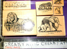 STAMPIN UP SERENGETTI 6 RUBBER STAMPS LION ELEPHANT ANIMALS
