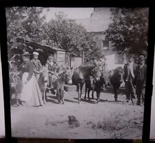 c1900 FARM FARMYARD Donkeys Horses WALES WELSH FARMER'S WIFE Glass Photo Slide