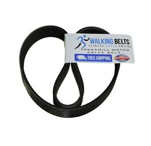 PFTL89015. ProForm Trainer 8.0 Treadmill Motor Drive Belt + Free 1oz Lube