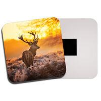 Winter Stag Fridge Magnet - Red Deer Scottish Highlands Wild Snow Fun Gift #8110