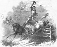 HORSES. M Jean Polaski, at Astley's, antique print, 1848