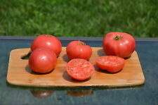 """Buckeye State"" Organic Tomato Seeds- 30+ Grown in 2017 for 2018 Season"