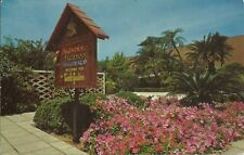 OLD VINTAGE FLOWERS AND PALMS AT BUSCH GARDENS IN TAMPA FLORIDA 1967 POSTCARD